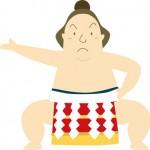 大相撲 2015年 十一月場所、チケットは、優勝力士予想