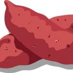さつまいもは栄養豊富、美肌効果、腸内環境を整える、選び方は?